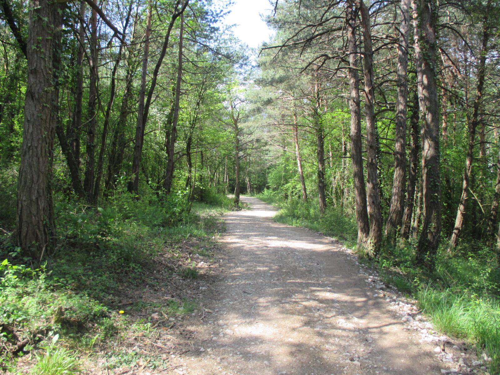 1 – RONCESVALLES-ZUBIRI  (22 km)