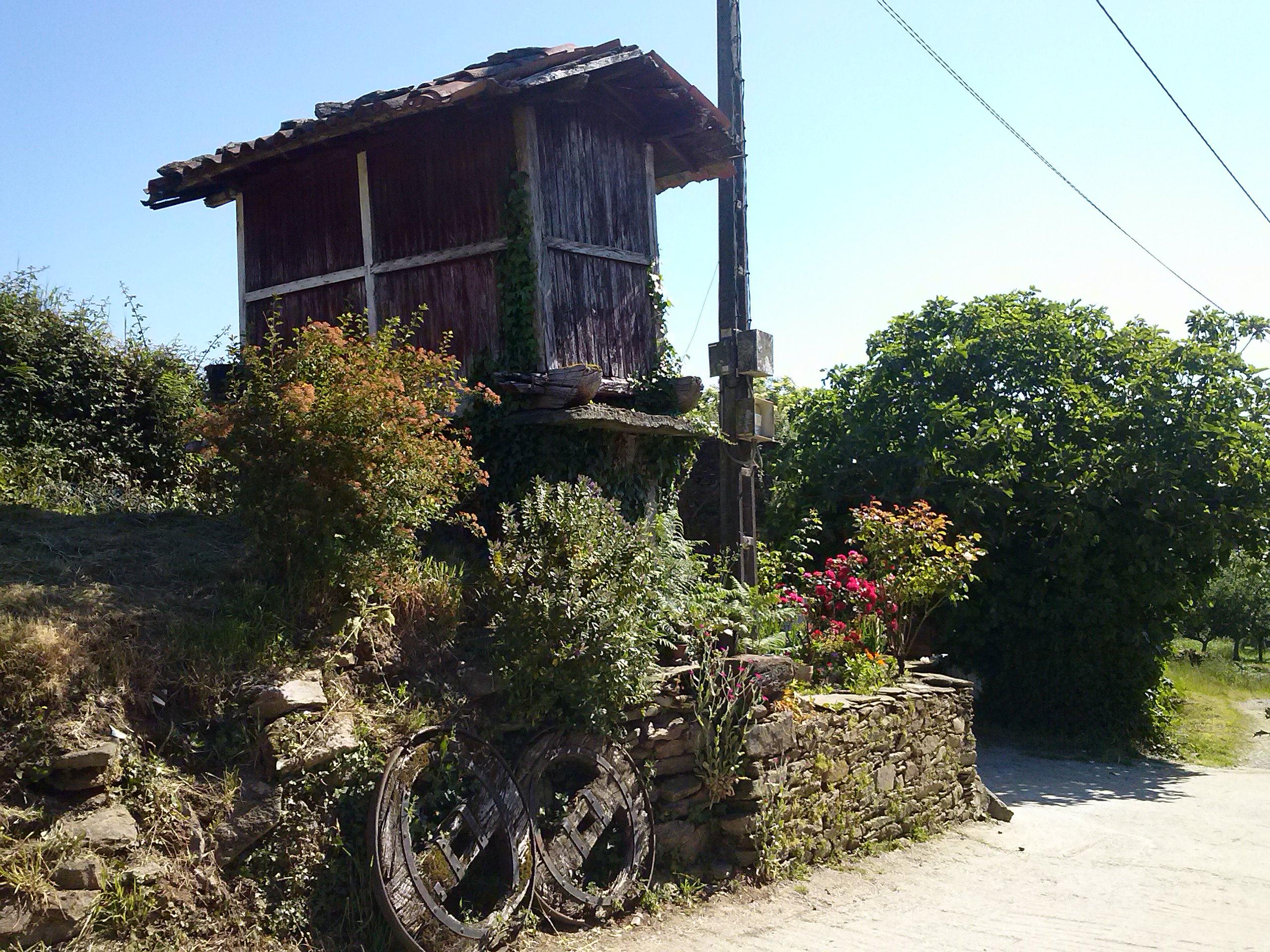 28.- TRIACASTELA – SARRIA (Por San Xil 18,4 Km)    (Por Samos 24,5 km)
